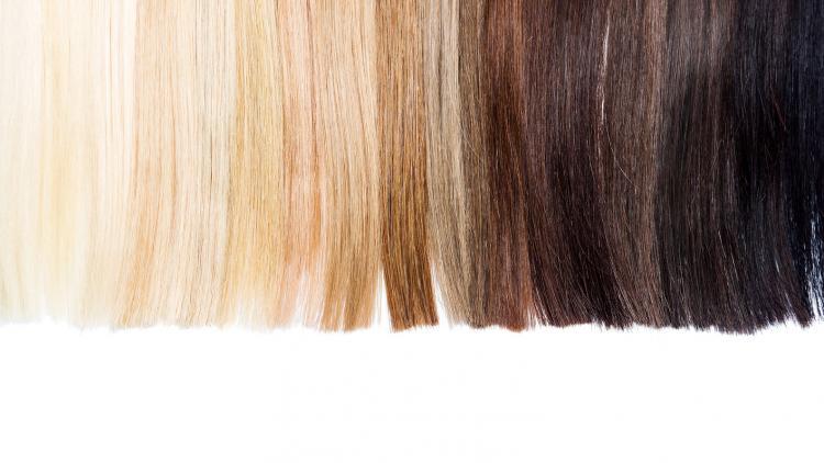 cheveu-definition