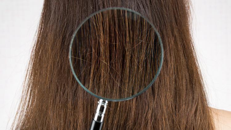 cheveux-secs-en-vieillissant.