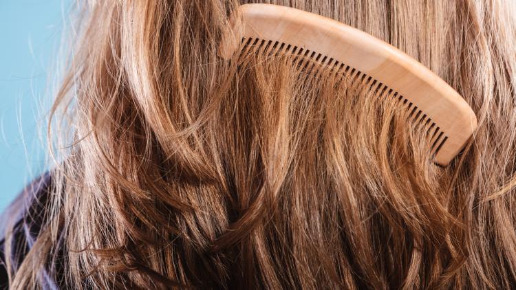 reconnaitre-cheveux-secs