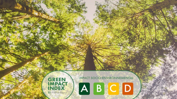 Logo-Green-Impact-Index