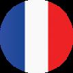 Fransa'da üretilmiştir*